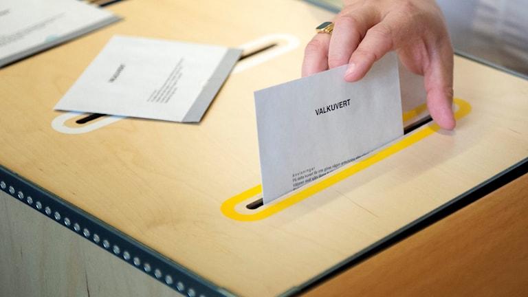 أعلنت هيئة الإنتخابات العامة عن وجود اخطاء في الطباعة على جميع بطاقات التصويت