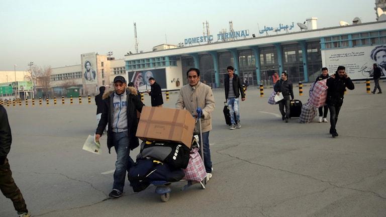 Tyskland, afghan