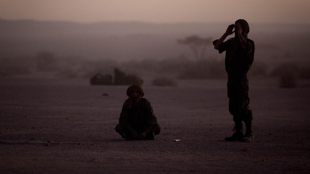 Polisario soldater.