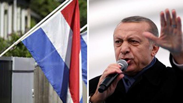 Turkiets President Erdogan och nederländska flaggan. Foto: John Culver/Phil Nijhuis/TT.