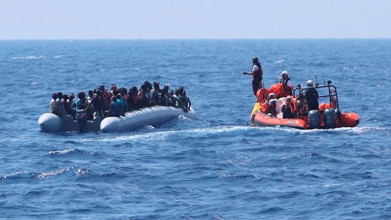 Ocean Viking medarbetare tar emot migranter, 11 augusti 2019. Foto: Hannah Wallace Bowman/TT.