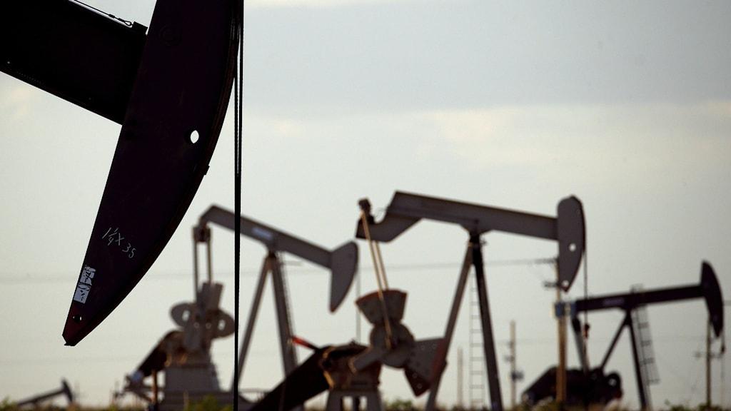 Oljeborrar på ett amerikanskt oljefält.