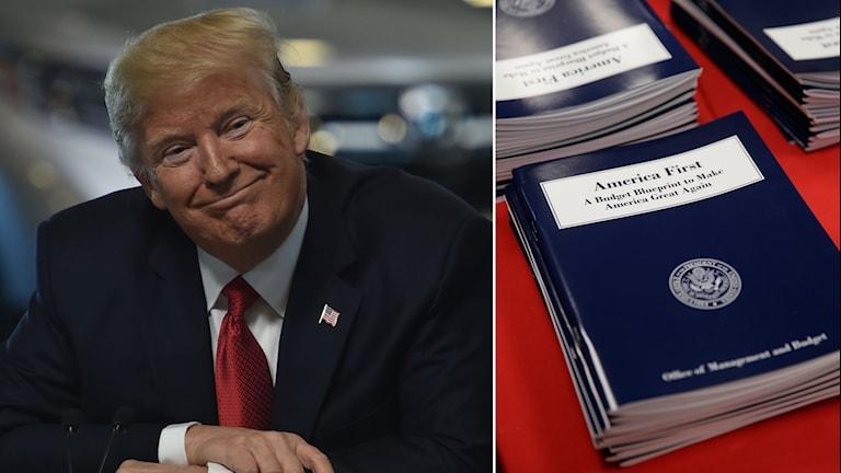 Donald Trump har presenterat sin första budget.