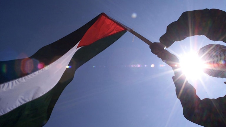 Palestinas flagga.