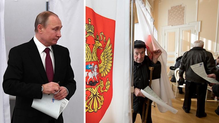Putin och valbås.