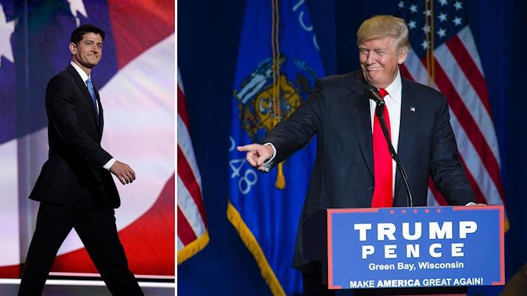 Paul Ryan och Donald Trump