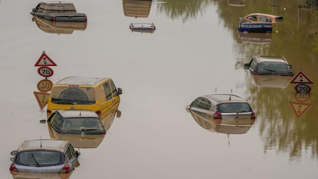 En grupp med personbilar är täckta nästan upp till taken med brunt vatten efter översvämningarna i Tyskland. Här och var sticker det upp vägskyltar som enda synliga tecken på att bilarna står på en väg som är täckt i vatten.