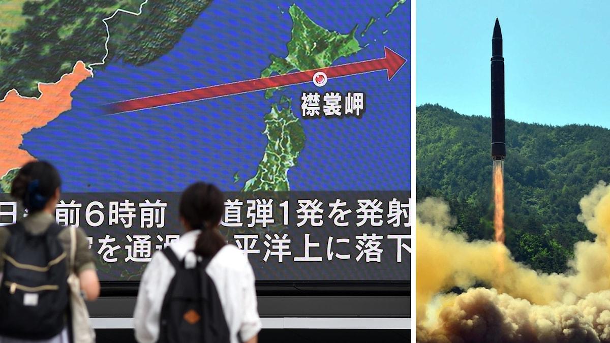 Nordkorea avfyrade robot över Japan