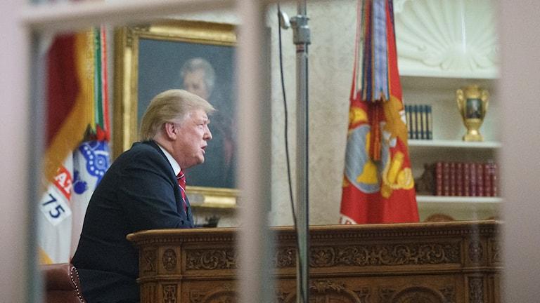 Trump kan ha dolt dokumentation från Rysslandsmötet