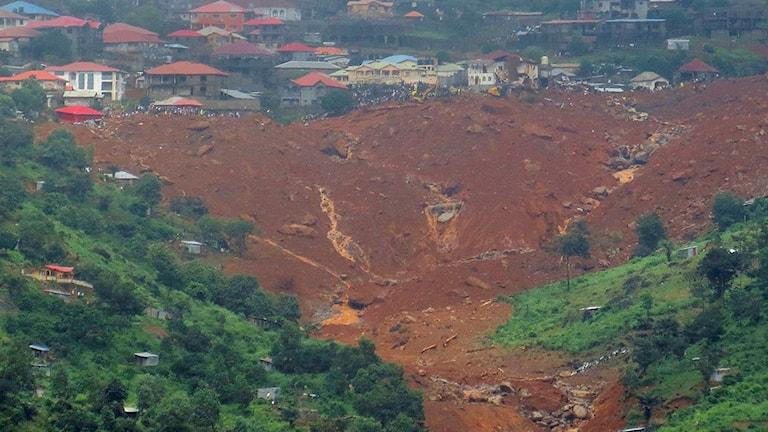 Katastrofarbeten i Regent, öster om Freetwon, Sierra Leone. Foto: AP Photo/TT.