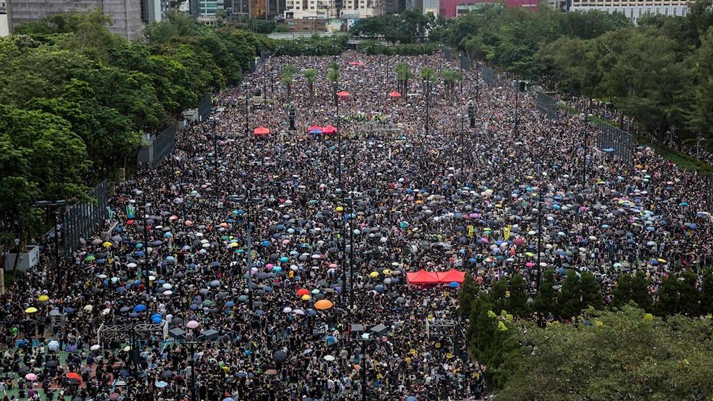 Demonstrationståg i Hongkong mot Fastlanskinas inflytande.