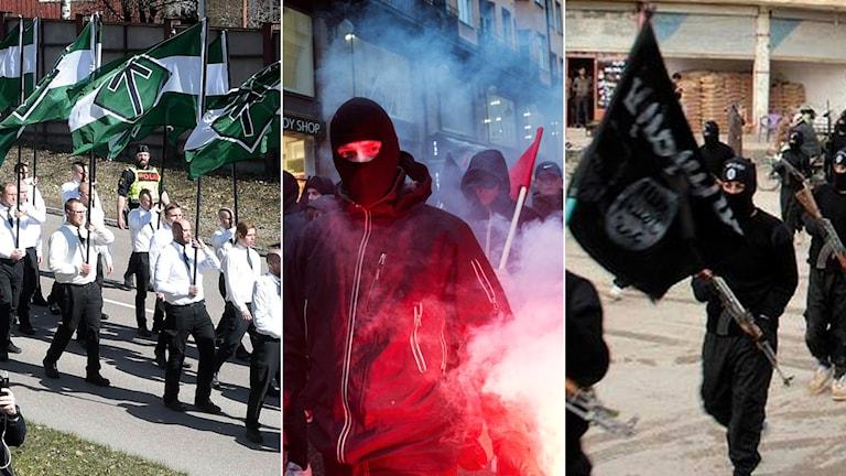Tredelad bild: högerextrem demonstration, vänsterextremistisk protest och