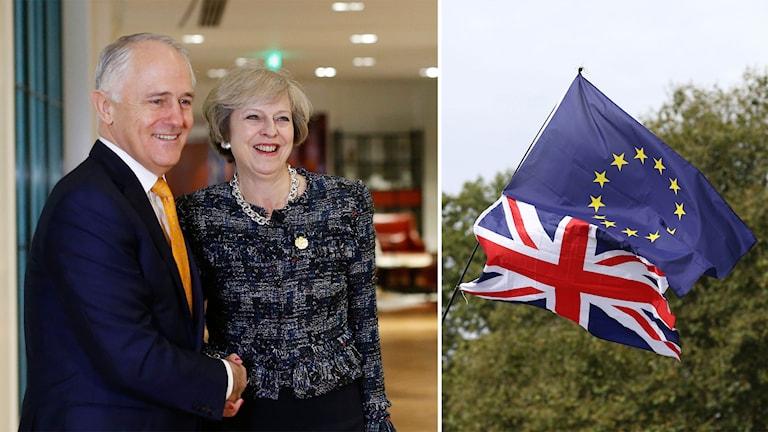 Australiens premiärminister Malcolm Turnbull skakar hand med Storbritanniens motsvarighet, Theresa May.