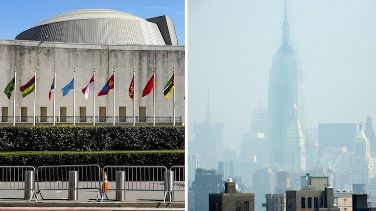 FN:s huvudbyggnad, och smog i New York (arkivbild). Foto: Adam Rountree/TT. Montage: Sveriges Radio.