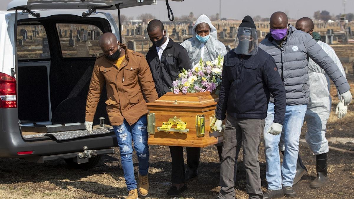 Familjemedlemmar bär kistan under en sjuksköterskas begravning på torsdagen.