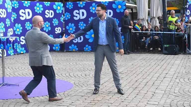 Charlie Weimers och Jimmie Åkesson. Foto: TT.