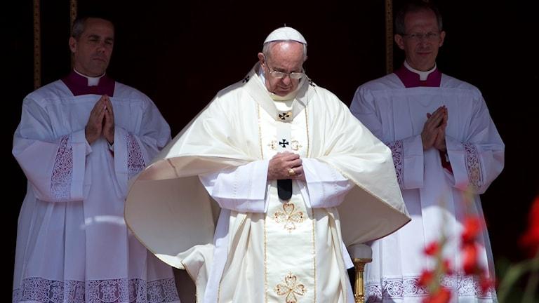 Papa Franciskus