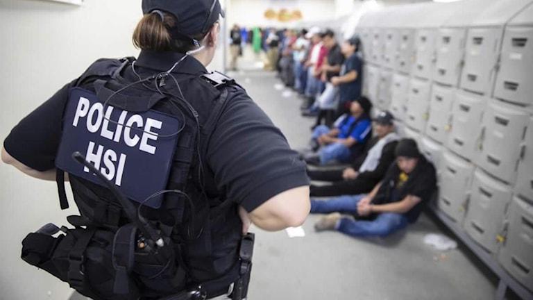 Polis från immigrationsmyndigheten vaktar flera gripna personer.