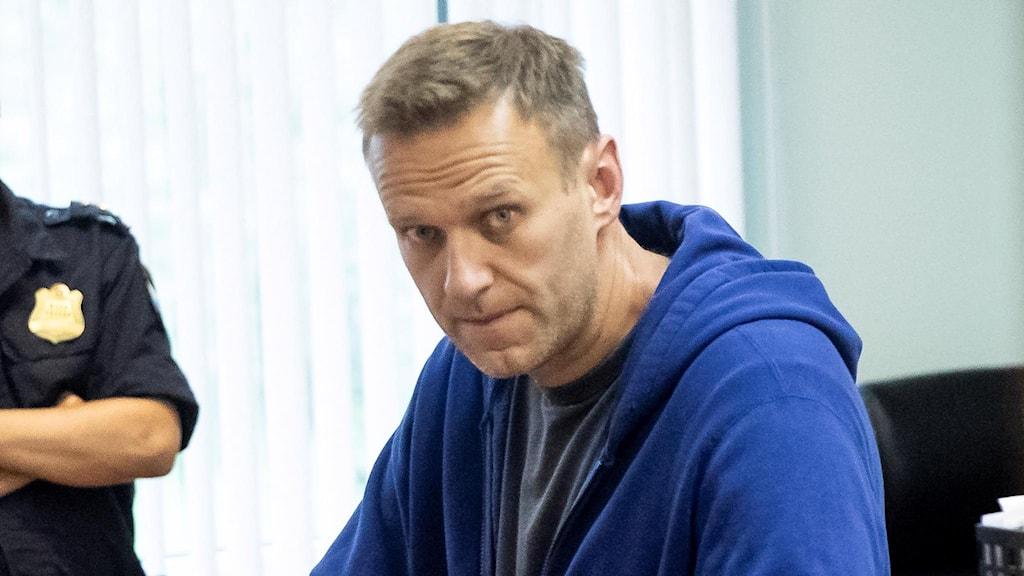 Aleksej Navalnyj i en rättssal 24 juli 2019.