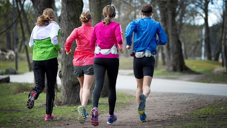 En grupp löpare.
