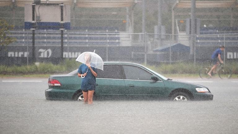 Stormen Harvey i Texas, USA.