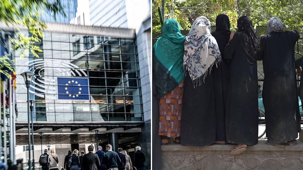bild på EU-flagga och afghaner med ryggen mot kameran