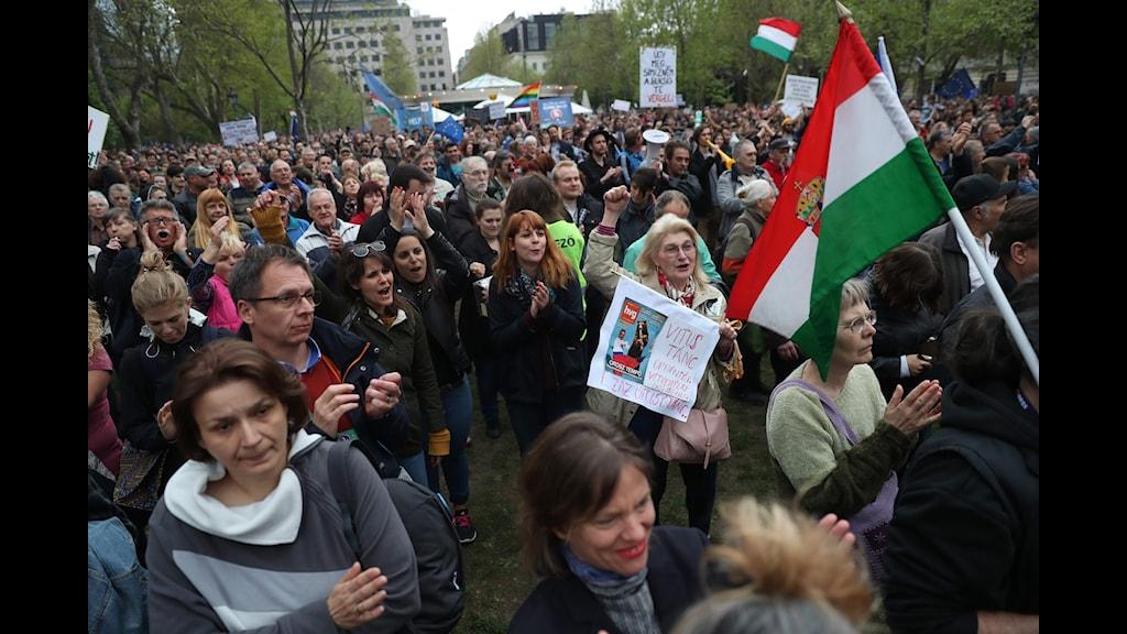 Demonstration mot Orbans regering och lagförslaget mot NGO:s