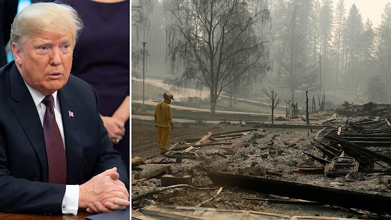 Trump besöker brandområden i Kalifornien