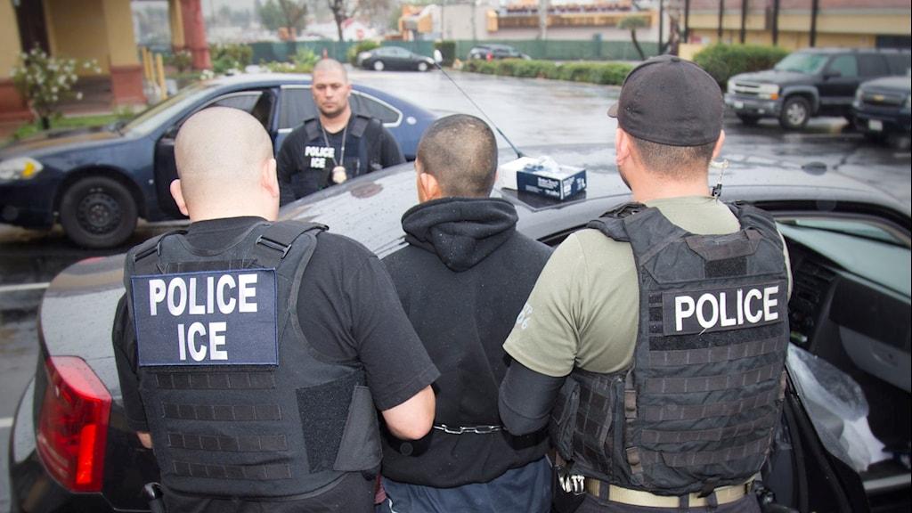 Poliser griper papperslös invandrare i USA.