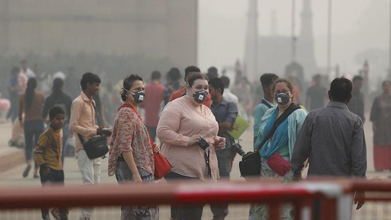 Farlig smog i Delhi