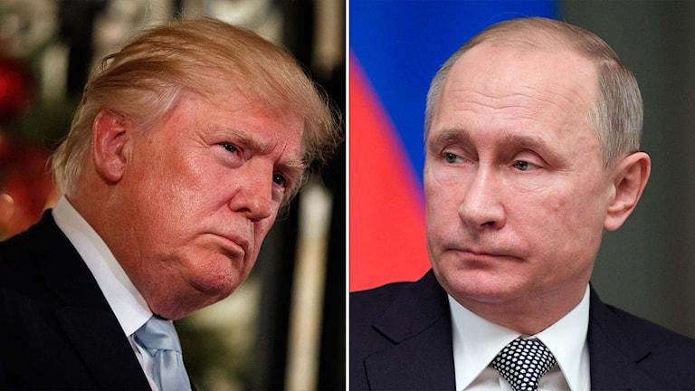 USA:s blivande president Donald Trump och Rysslands president Vladimir Putin.