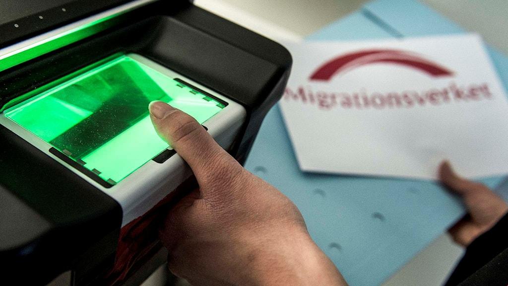 Registrering och och fingeravtryck av asylsökande.