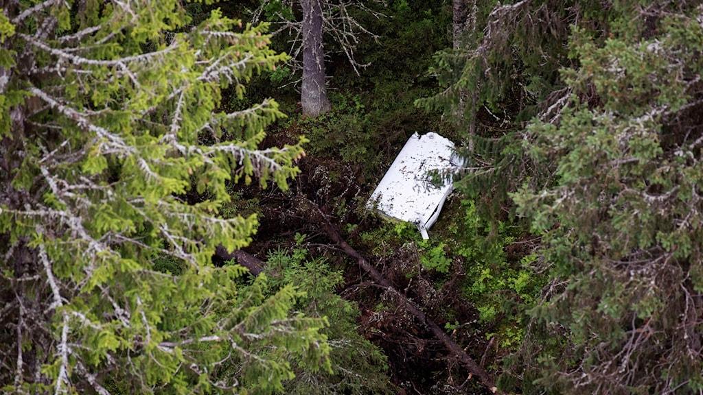 En del av flygplanskroppen i skogen på Storsandskär.