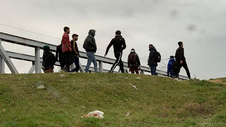 Migranter vid gränsen mellan Grekland och Turkiet