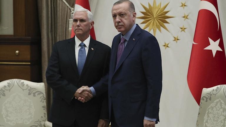 USA:s vice president Mike Pence och Turkiets Erdogan.