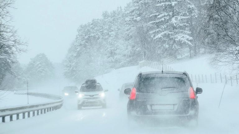 Snöväder i biltrafiken.