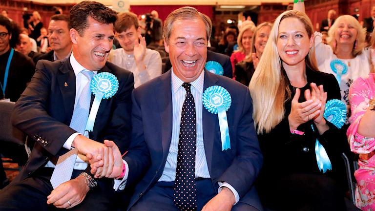 Nigel Farage, Brexitpartiet.