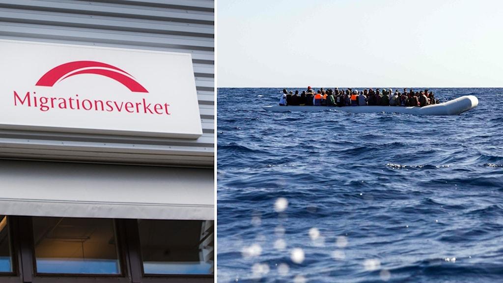 Fler asylsökande väntas i år