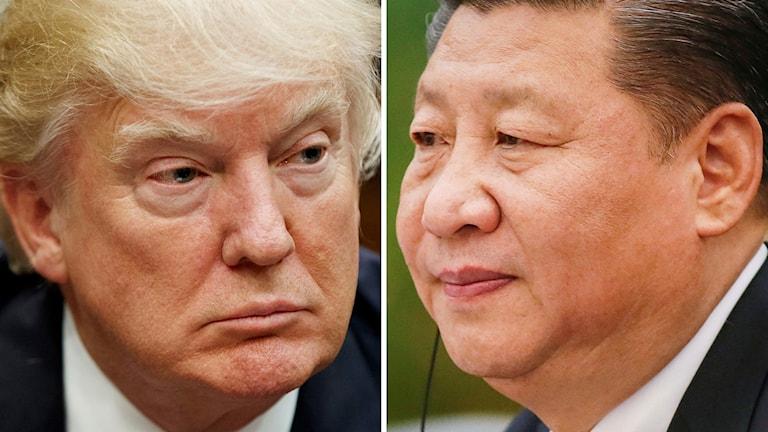 USA:s president Donald Trump, till vänster. Kinas president Xi Jinping till höger.