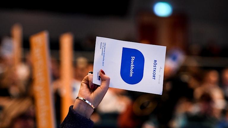 Omröstning på landsmötet. Foto: Pontus Lundahl/TT.