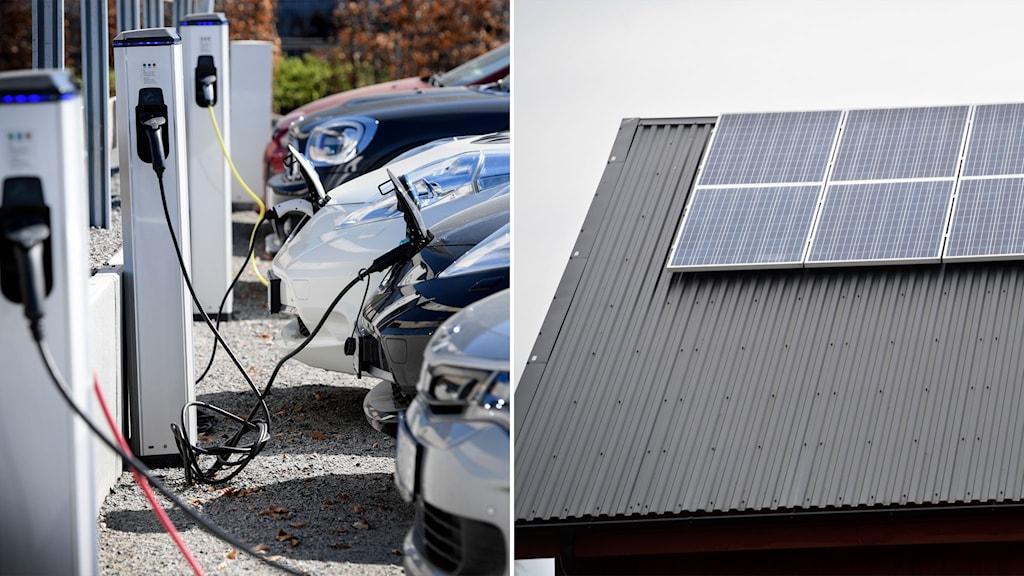 laddstolpar på rad och solceller på ett tak.