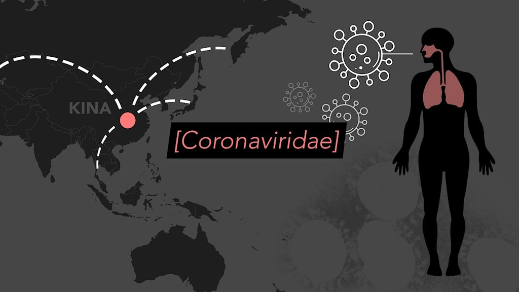 Ett grafiskt montage som illustrerar viruset corona.