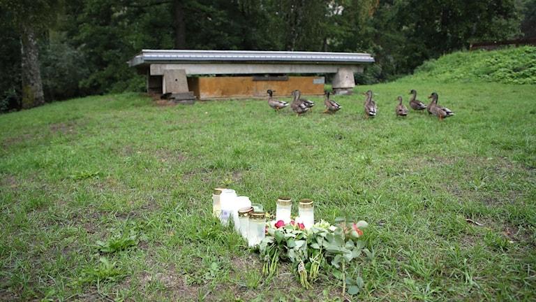 Ljus vid grönområdet och platsen där den hemlöse mannen från Rumänien bodde och även dog i början av augusti. På torsdagen hölls häktiningsförhandlingen i Jönköpings tingsrätt av en 16-årige pojke som häktats för inblandning i mordet på en hemlös man i Huskvarna. Foto: Adam Ihse / TT