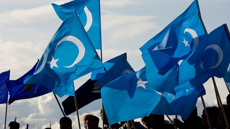 uiguriska demonstranter