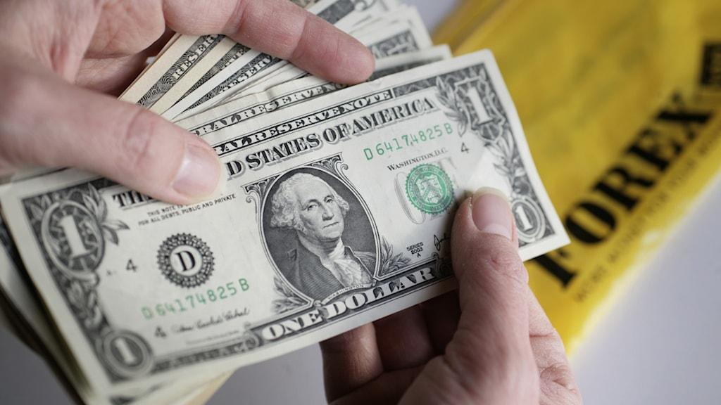En bunt amerikanska dollarsedlar räknas efter att ha växlats hos Forex.