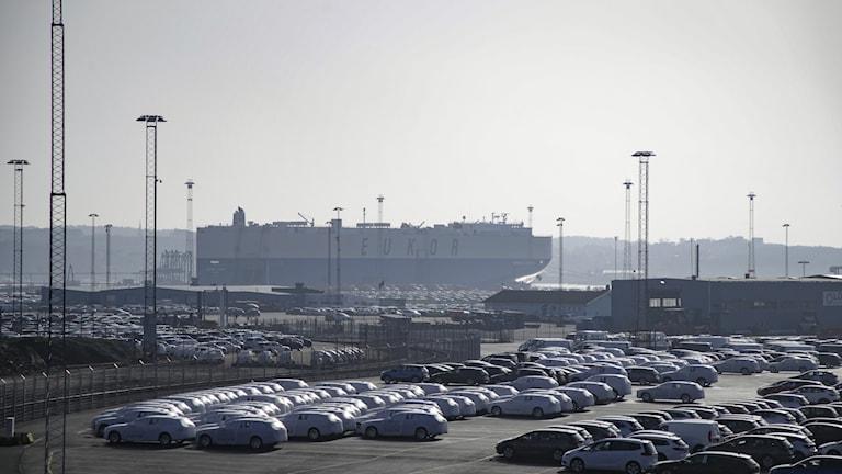 Volvobilar i Göteborgs hamn.