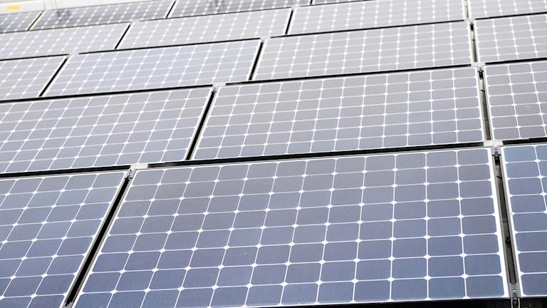 Solenergi genre solceller