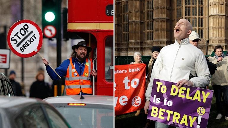 """Delad bild: en man med en skylt med texten Stop Brexit, en annan man med en annan skylt där det står """"att fördröja är förräderi""""."""