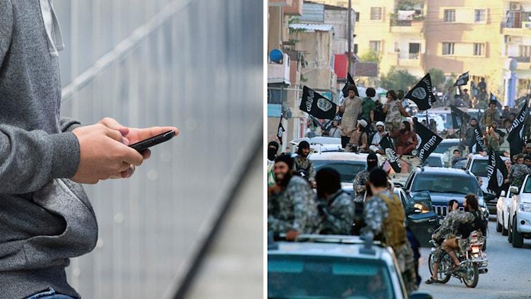 Islamiska staten, radikalisering