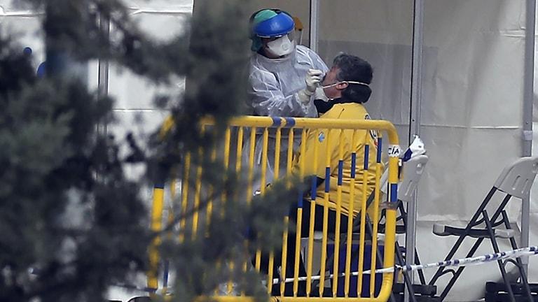 En vårdanställd testar en patient för covid-19 utanför Casa de Campo i Madrid.